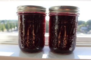 blueberryapplejam30