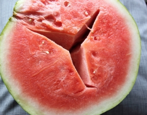 watermelonsalad1