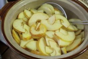 apple roses4