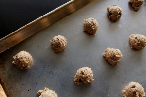 sour dough cookies 7