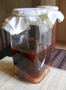 coffee kombucha 7
