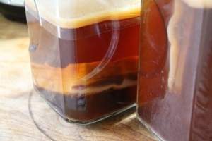 coffee kombucha 1