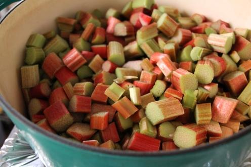 rhubarb sherbert 3
