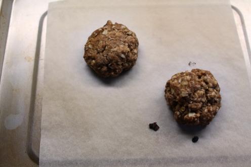lactation cookies 9