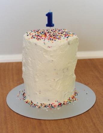 smash cake 21