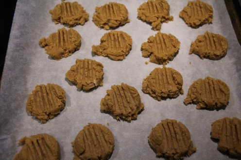 peanut butter cookie 7